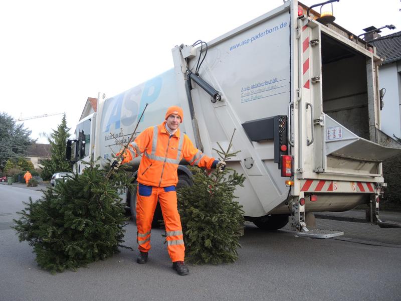 In der 2. und 3. Kalenderwoche werden die ausgedienten Tannenbäume wieder kostenlos abgeholt. ©ASP