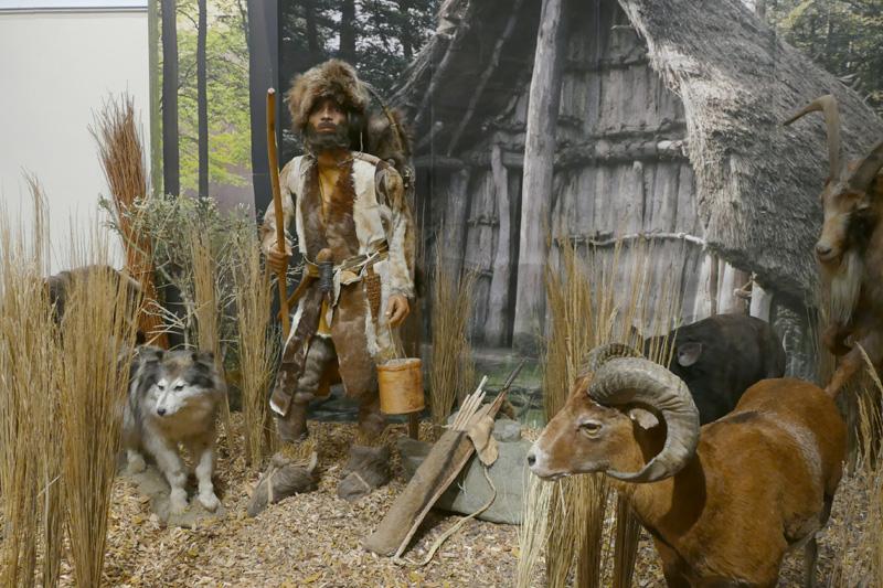 Nachbildung von Ötzi, seinen Ausrüstungsgegenständen und Haustieren in der Ötzi-Ausstellung. ©Klaus Wollmann