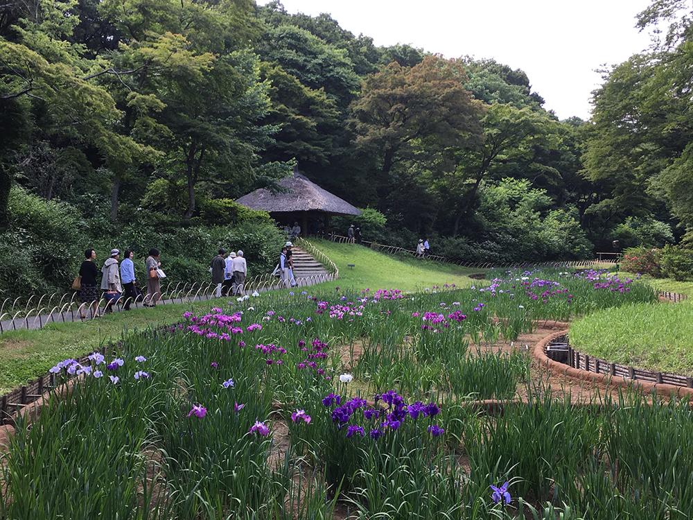 Tokyos grüne Oasen