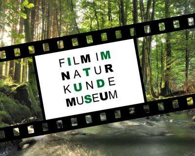 Kurzfilme im Naturkundemuseum im Marstall